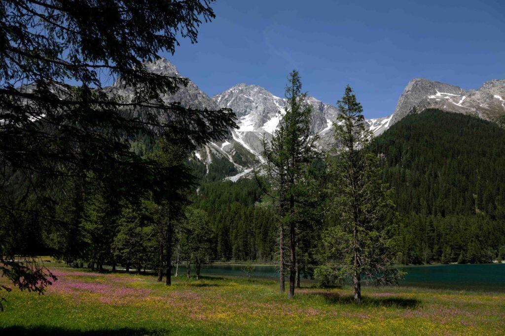 Antholzer See Dolomiten Südtirol